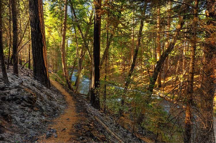 _HDR5529e HDR creek view