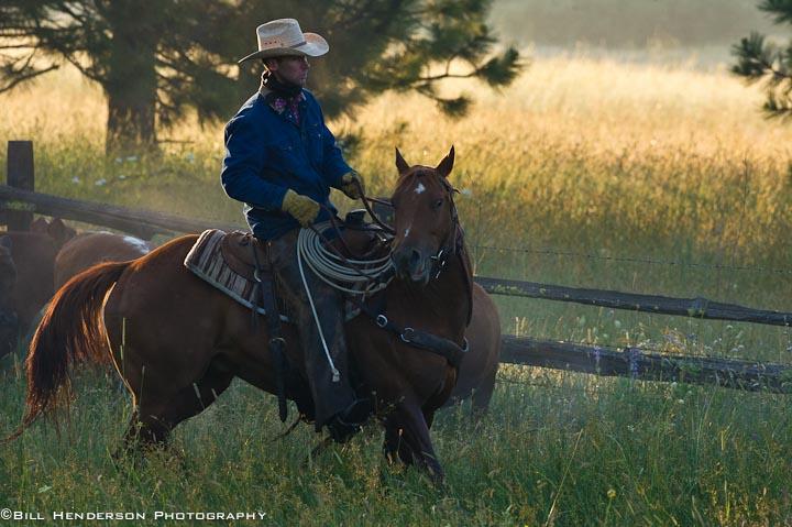 Cowboy689