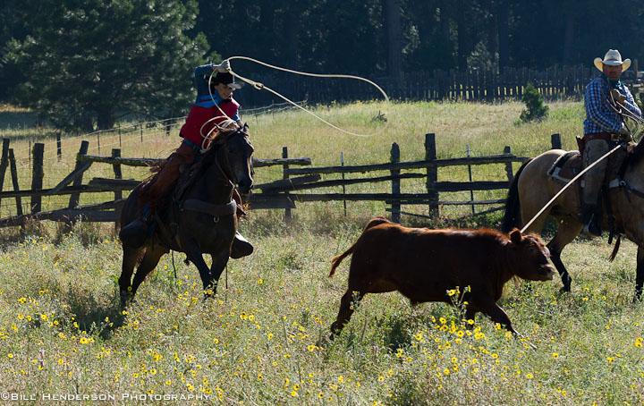 Cowboy2835