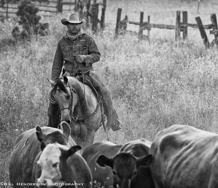 Cowboy636-Edit