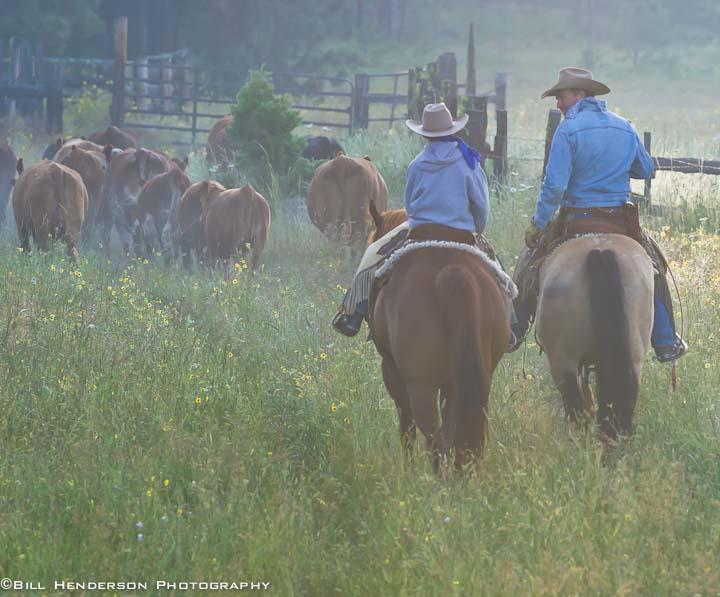Cowboy820