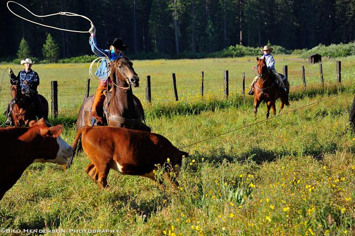 Cowboy1283