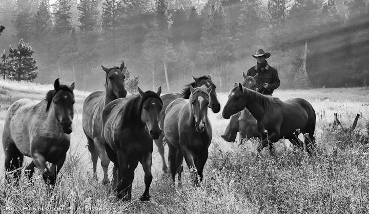 Cowboy2609-Edit