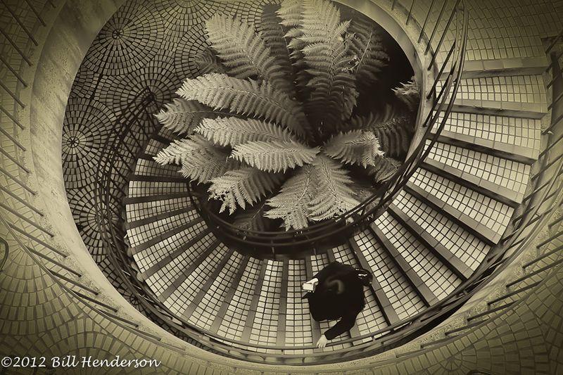 20111208NIKON D3S428DonSchrimp-Edit-Edit-Edit
