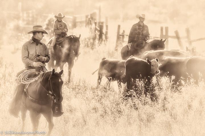 Cowboy182-Edit