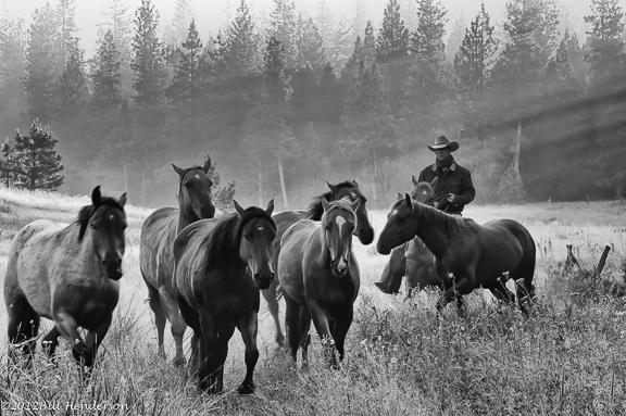 Cowboy2609-Edit-Edit-2-2
