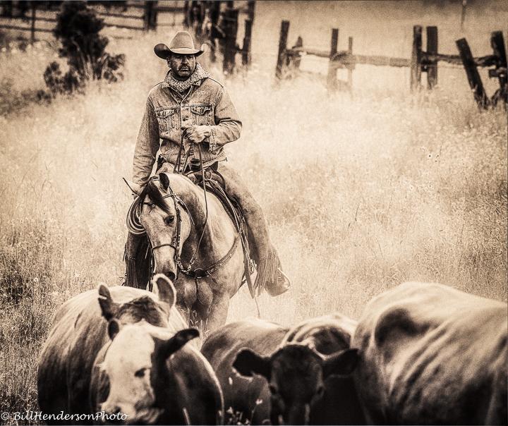 Cowboy636-Edit-Edit