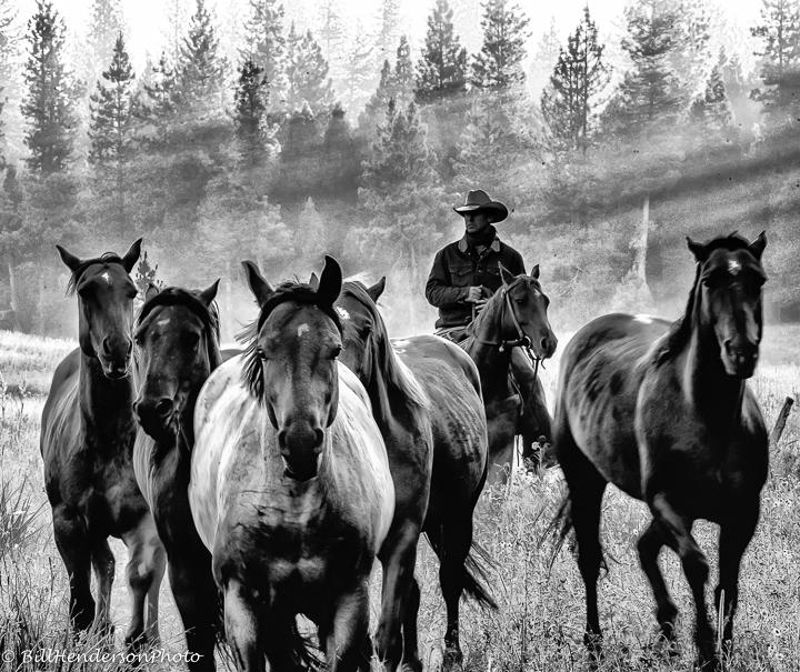 Cowboy2617-Edit-Edit